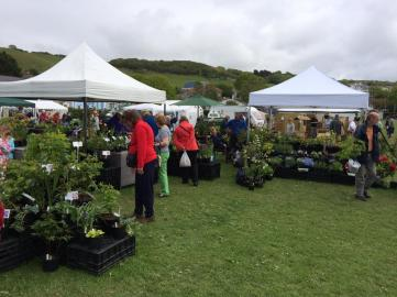 Ceredigion plant fair