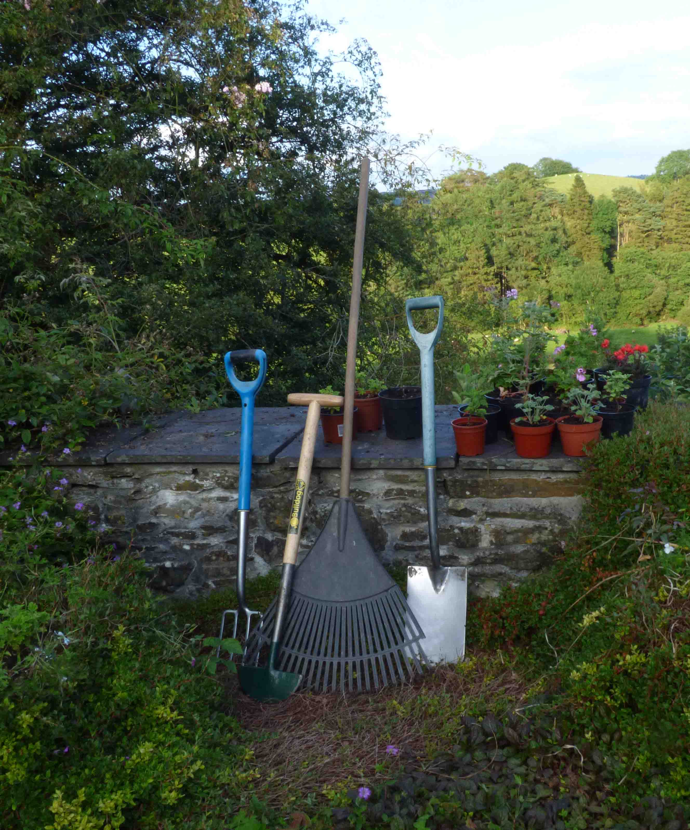 Gardens By Maria: How Gardening Promotes Physical And Mental Health By Maria